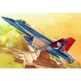 Plastic kit planes HB80321